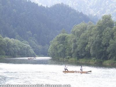 Spływ przełomem Dunajca flisak