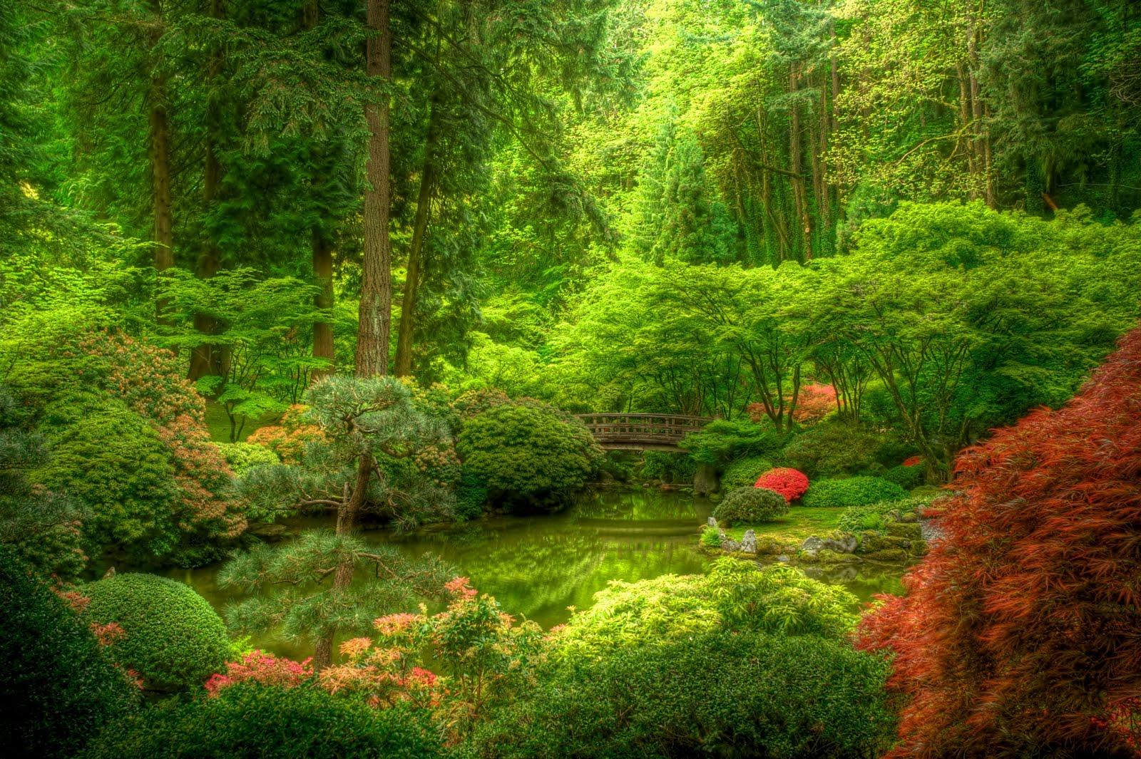 T stop photography portland japanese garden for A japanese garden