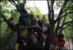7c på Vialundskolan Kumla