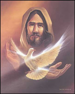 Cute and beautiful dove in Jesus Christ hands Christian religious photo