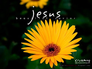 Jesus beautiful savior caption letters on with beautiful yellow sunflower background religious Christian hd(hq) desktop wallpaper free download