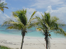 Living on Island time, Retirement in Abaco Spiced with Food, Friends & Rum, by Sam Hoffer