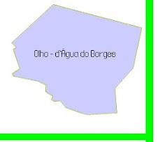 OLHO D\