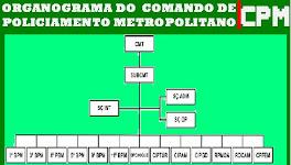 ORGANOGRAMA DO CPM