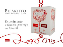 Video Presentation of Bipartito