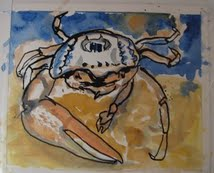 Welcome to Fiddler Crab Review