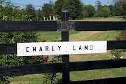Charly Land