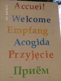 Um olá poliglota...