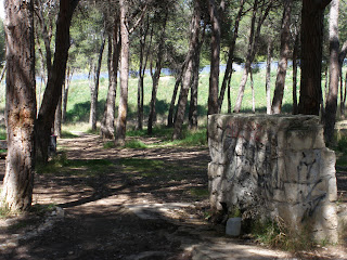 pinares de Venecia Torrero Zaragoza