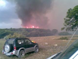 llamas incendio pinar Zuera Castejon de Valdejasa