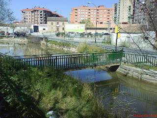 canal Torrero