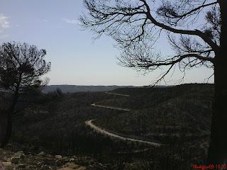montes quemados La Plana Valmadrid