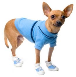Chihuahua Clothes Cost