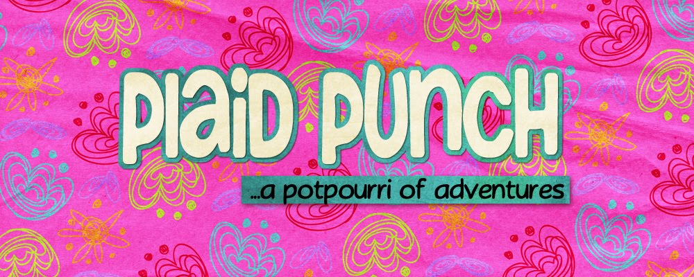 Plaid Punch