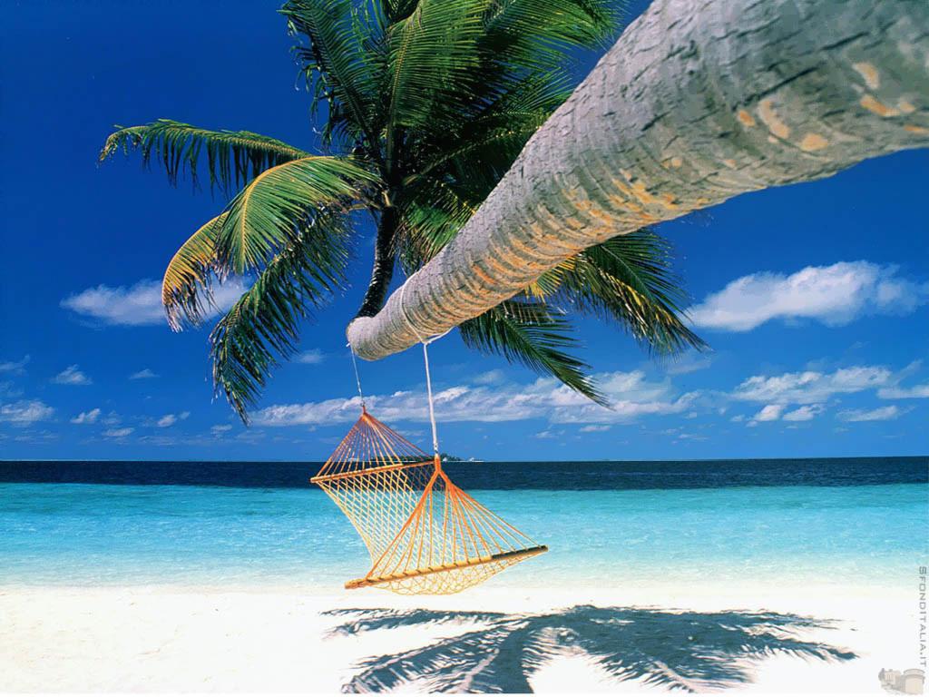 http://3.bp.blogspot.com/_pZe6JqylXJ0/TCKmw3Wzt9I/AAAAAAAAADA/dVdQ4zj8S6Q/s1600/BeachHammock.jpg