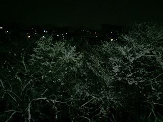 写真: 夜に撮影した病室の窓の外の光景。手前には雪をかぶった木々、その奥に住宅地の明かりが見える。