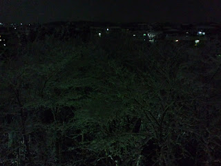 写真: 夜中2時頃に撮影した、窓から見える深夜の雪景色