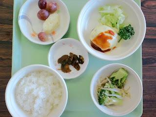 写真: 9日目の昼食