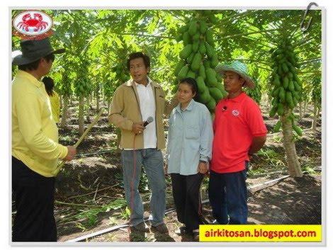 Testimoni pengguna Kitosan