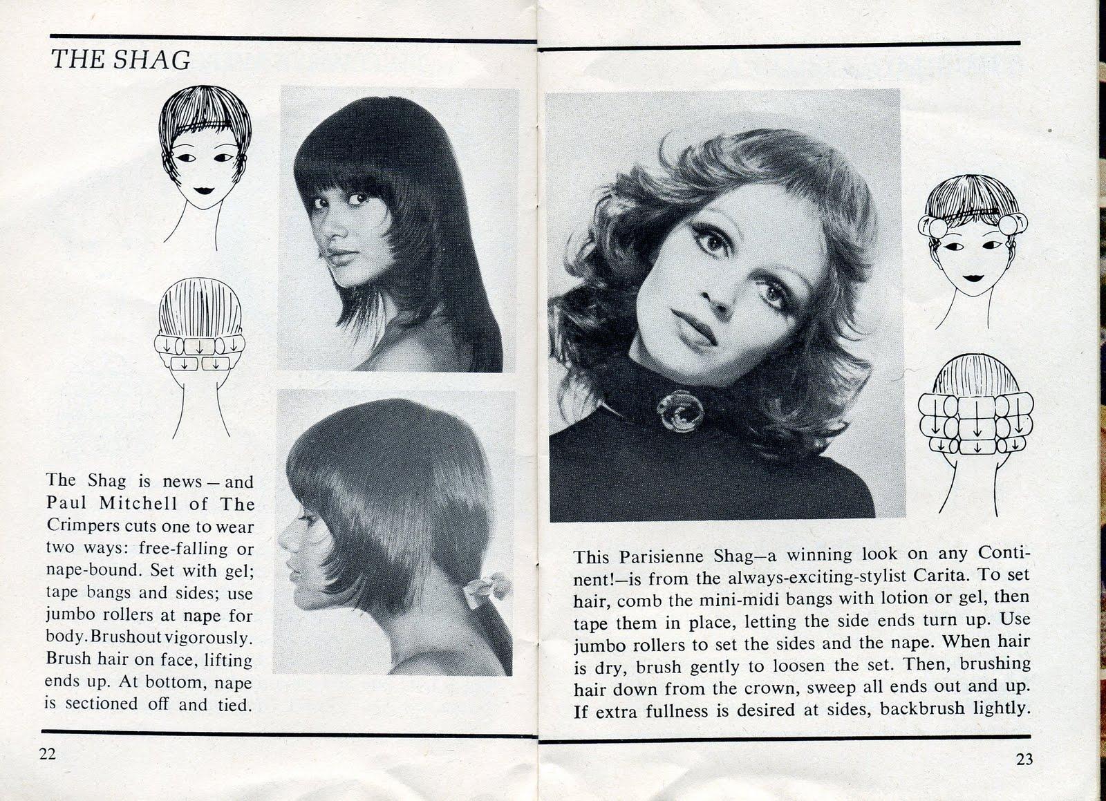 1970 Gypsy Shag Hairstyles