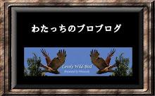 わたっちの鳥見ブログ