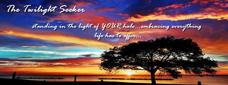 the twilight seeker