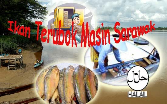 Ikan Terubok Masin Sarawak