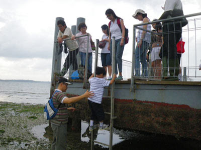 Climbing down the ladder at Chek Jawa