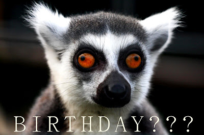 Happy Birthday Hugo! Lemur%2Bbirthday