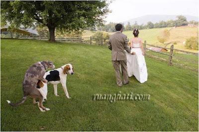 Heboh, Wedding Foto Pengantin Diselingi Adegan Panas