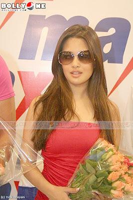 Riya Sen Rohit Roy