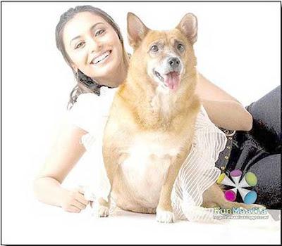 Rani Mukherjee Marriage