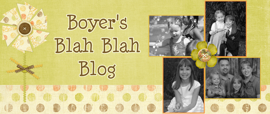 Boyer's Blah Blah Blog