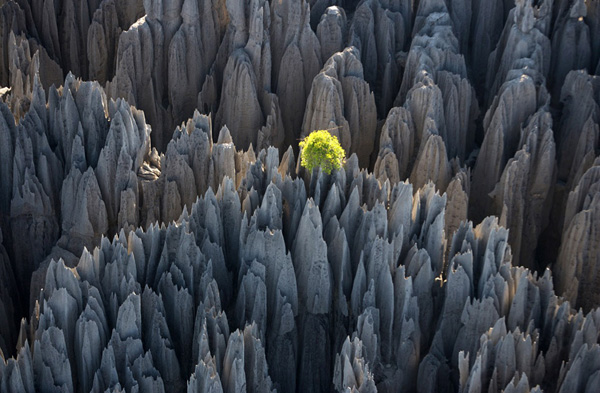 asia destinations, Yunnan Stone Forest