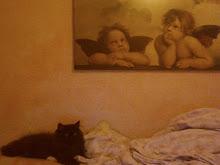 Raul en su cama