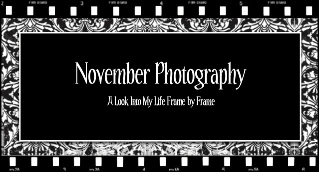 November Photography