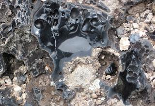 Obsidian in the Valles Caldera