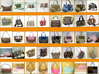 The Expansion of Coach Handbags photo