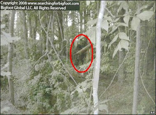 Enhanced photos of the Georgia Bigfoot