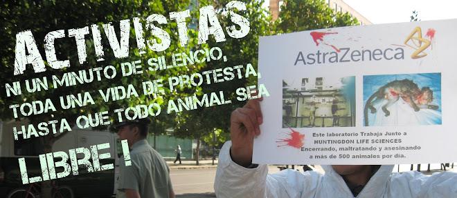 Activistas CDA