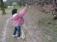 可愛い女の子が梅を観て・・・