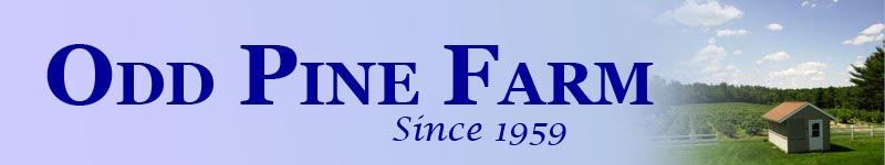 Odd Pine Farm