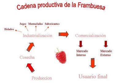 cadena suministro mermelada: