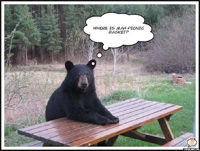 Lol Bear Doodle's Dawdle: Lol B...