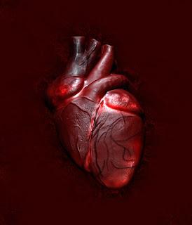 [coração.bmp]