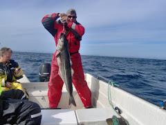 Norge, Helnessund 2007