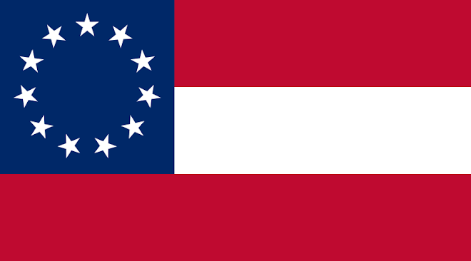 First National Flag (11 Stars)