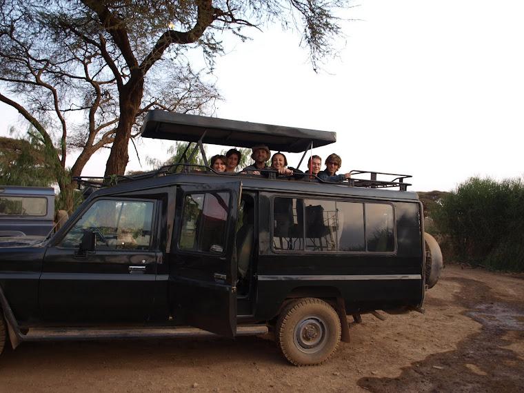 Safari con gipp