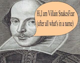 names schames