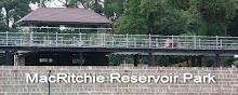 Moulmein @ MacRitchie Reservoir Park